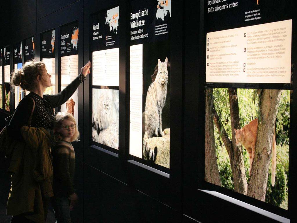 Paläon – Sonderausstellung die Eiszeitjägerin